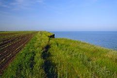 La terre agricole d'éboulements en mer Photo libre de droits