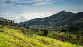 La terre agricole dans Nilgiris près d'Ooty Images libres de droits