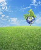 La terre avec le champ d'arbre et d'herbe verte au-dessus du ciel bleu, sauvent l'ea Image stock