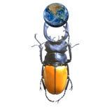 La terre avec un scarabée, y compris des éléments meublés par la NASA Images stock