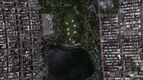 La terre bourdonnent dans le Central Park New York Etats-Unis de sortie de bourdonnement banque de vidéos