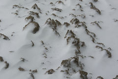 La terre brune se recroquevillante de neige Images libres de droits