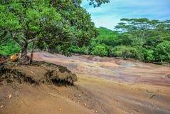 La terre colorée par sept sur Chamarel, île des Îles Maurice image stock