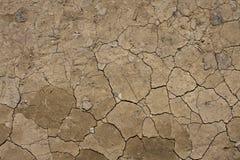 La terre criquée Photo libre de droits