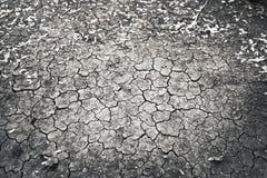 La terre criquée Photographie stock