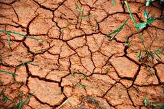 La terre criquée Photographie stock libre de droits