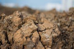 La terre criquée au ressort Fond et texture Image libre de droits