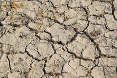 La terre criquée dans le désert photo libre de droits