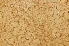 La terre criquée et sèche est jaune Un désert sans eau La terre aride Soif pour l'humidité sur un espace sans vie Situa écologiqu photo stock