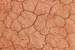 La terre criquée et sèche est jaune Un désert sans eau La terre aride Soif pour l'humidité sur un espace sans vie Situa écologiqu photographie stock