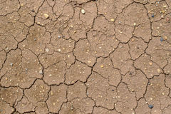 La terre criquée, la terre dans la sécheresse, la texture de sol et la boue sèche, Photo stock