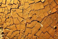 La terre criquée sèche Images stock