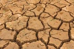 La terre criquée sèche Photos stock