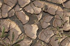 La terre criquée sèche de concept de changement climatique Images libres de droits
