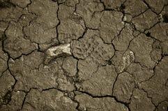 La terre criquée sèche Le désert Fond  image stock