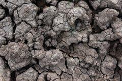 la terre criquée sèche pour le fond et la conception Photos libres de droits