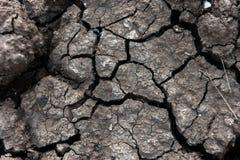la terre criquée sèche pour le fond et la conception Images stock