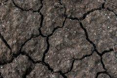 la terre criquée sèche pour le fond et la conception Images libres de droits