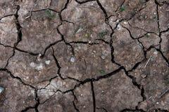 la terre criquée sèche pour le fond et la conception Photos stock