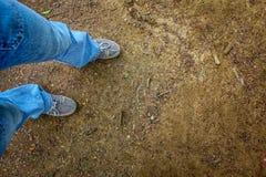 La terre dans la forêt et jambes des blues-jean de port de personnes et des espadrilles blanches Photos libres de droits