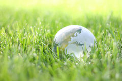 La terre dans herbe d'eco de nature la bio Image libre de droits