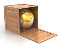 La terre dans la caisse Photos stock