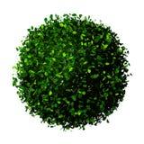 La terre de planète faite de feuilles Globe d'Eco Boule des feuilles de vert d'isolement sur le blanc Photographie stock libre de droits