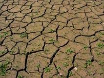 La terre desséchée Photos stock