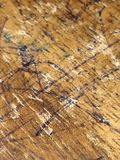 La terre du bois photos libres de droits