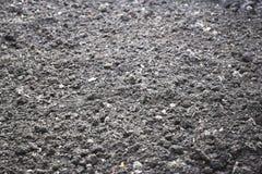 La terre pierreuse sèche Images stock
