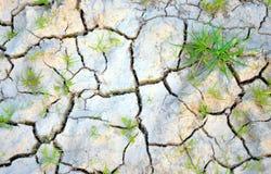 La terre sèche Photo libre de droits