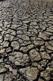 La terre sèche Photos libres de droits