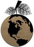 La terre sèche de fruit avec les lames mortes d'arbre Photographie stock libre de droits