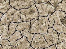 La terre sèche et criquée Photographie stock