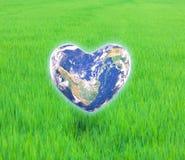 La terre sous forme de coeur, Images libres de droits