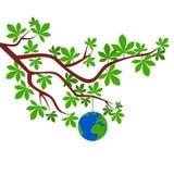 La terre sur la branche - illustration Photo stock