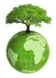 La terre végétale Images libres de droits