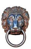 La testa dei leoni ha isolato Fotografie Stock