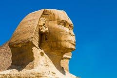 La testa della statua della Sfinge Immagine Stock