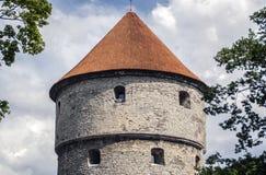 La testa della torre della fortezza Fotografia Stock Libera da Diritti