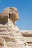 La testa dello Sphinx Fotografia Stock