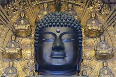 La testa di grande Buddha Daibutsu nel corridoio principale di Todaiji a Nara, Giappone Fotografie Stock Libere da Diritti