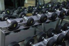 La testa di legno ha messo nei pesi di allenamento della palestra di forma fisica che traning Immagine Stock Libera da Diritti