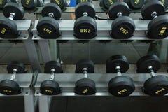 La testa di legno ha messo nei pesi di allenamento della palestra di forma fisica che traning Immagini Stock Libere da Diritti