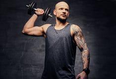 La testa rasa sportiva ha tatuato l'allenamento facente maschio della spalla con la testa di legno Immagini Stock