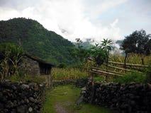 La tettoia ed i campi di grano dell'agricoltore in Himalaya Immagini Stock Libere da Diritti