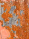 La textura aherrumbró hoja Imagen de archivo libre de regalías