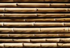 La textura de bambú Fotografía de archivo