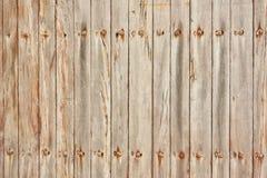 La textura de la madera ligera Fotografía de archivo