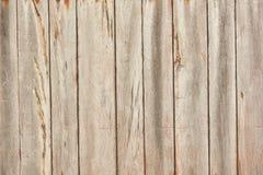 La textura de la madera ligera Imágenes de archivo libres de regalías